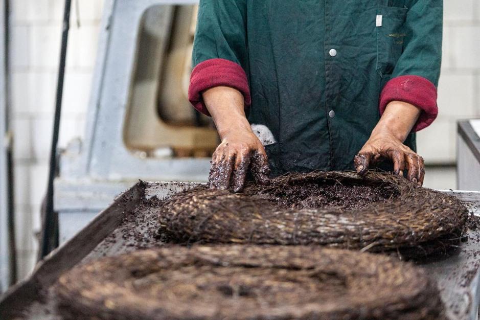 توقع ارتفاع صادرات زيت الزيتون بتونس - 09- توقع ارتفاع صادرات زيت الزيتون بتونس - الاناضول