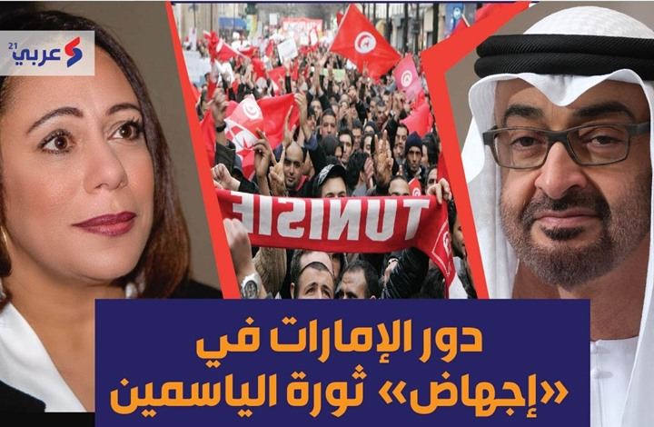 وزيرة تونسية سابقة: هذا دور الإمارات في إجهاض ثورة الياسمين