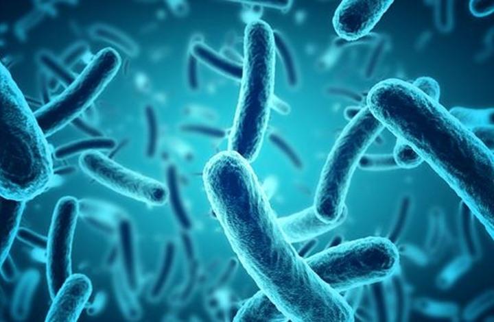 """""""بكتيريا خارقة"""" أخطر من كورونا تهدد حياة الملايين"""