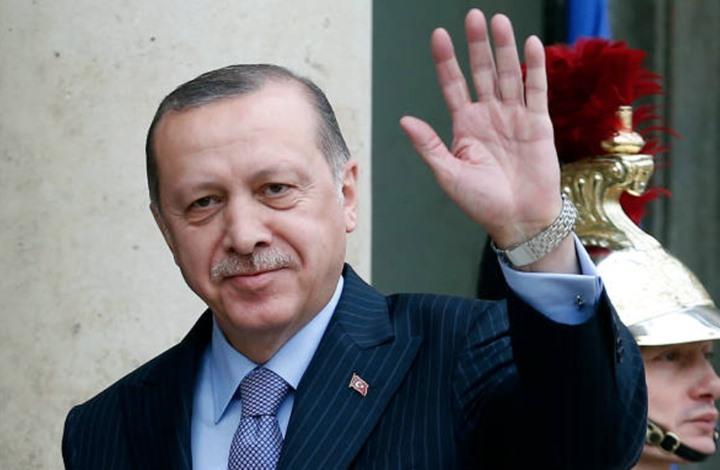 سياسي هولندي ينشر رسما يهاجم أردوغان.. هكذا ردت أنقرة