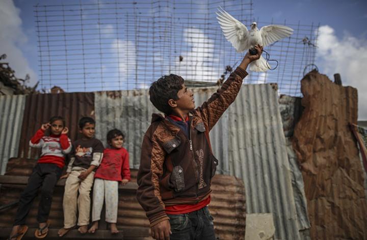 هجرة الشباب من غزة لأوروبا.. ظاهرة حقيقية أم تضخيم إعلامي؟