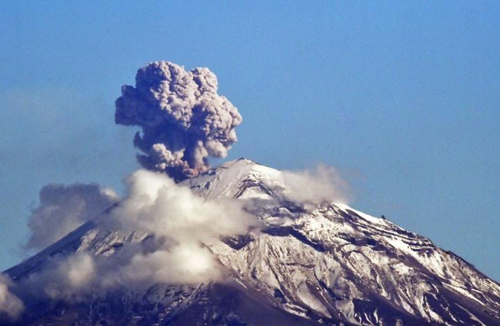 هذا ما وجده الباحثون في دماغ أحد ضحايا بركان قديم