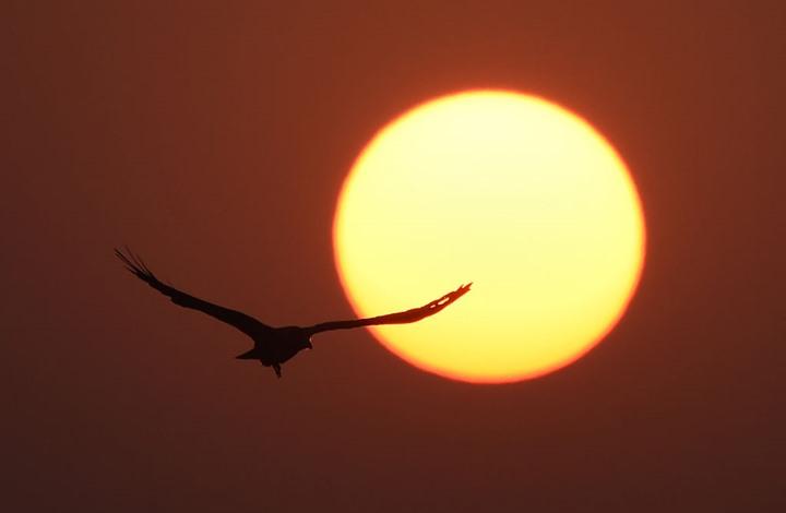 مدينة أمريكية لن تشهد شروق الشمس لمدة شهرين
