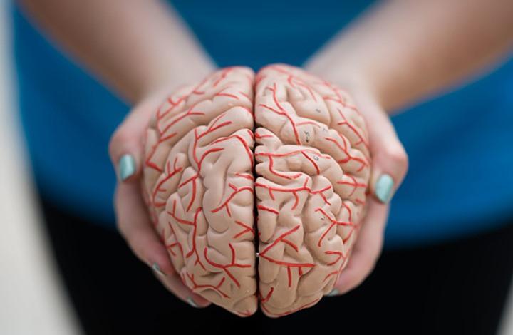 """أميبا """"آكلة للدماغ"""" تحول جزءا من دماغ بستاني إلى سائل"""