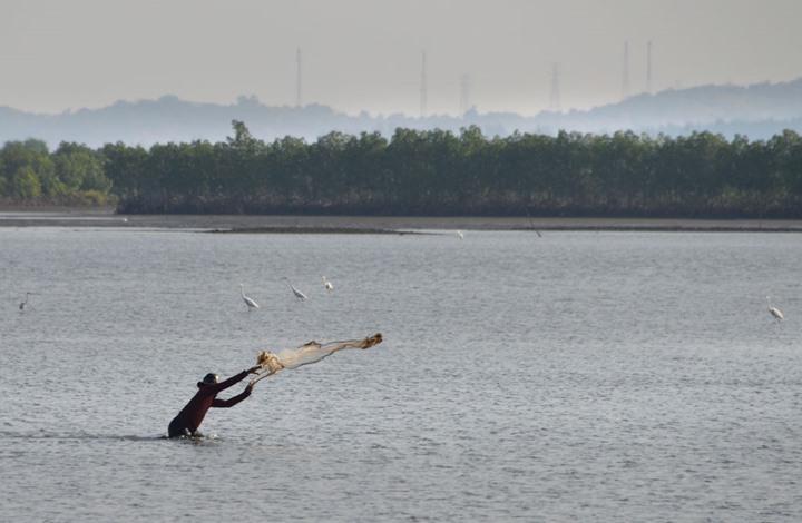 هكذا تحول صياد سمك بإندونيسيا إلى فريسة
