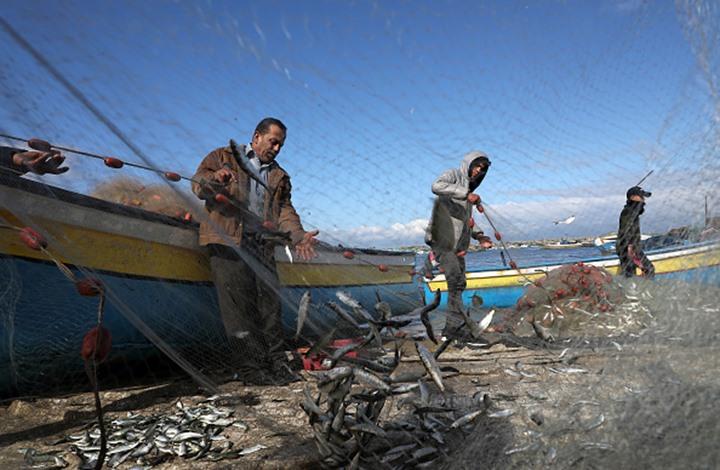 إسرائيل توسع منطقة الصيد البحري في غزة إلى 15 ميلا