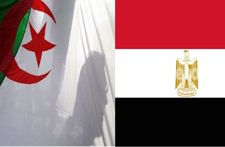 ثورة 1919 بمصر والحركة الوطنية الجزائرية.. التأثير الصامت