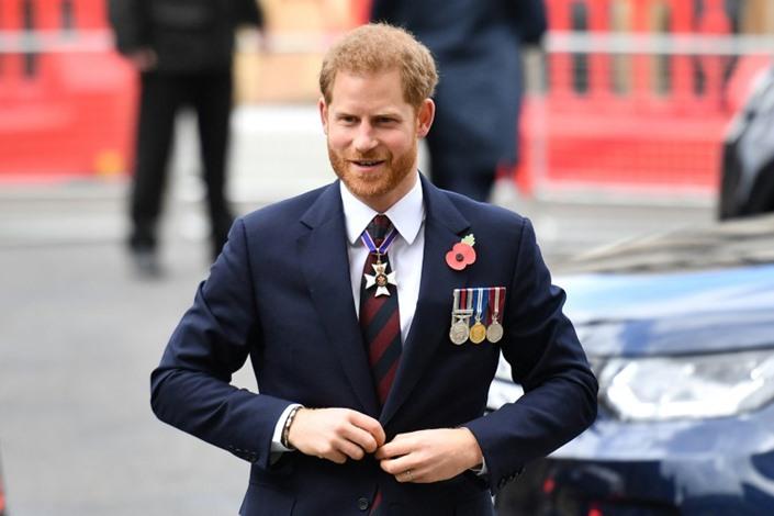 الأمير هاري عضو في لجنة لمكافحة المعلومات المضللة