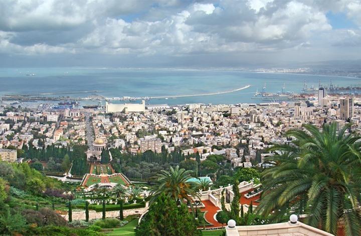 حيفا.. مدينة التوت والأرجوان تقاوم على جبل الكرمل
