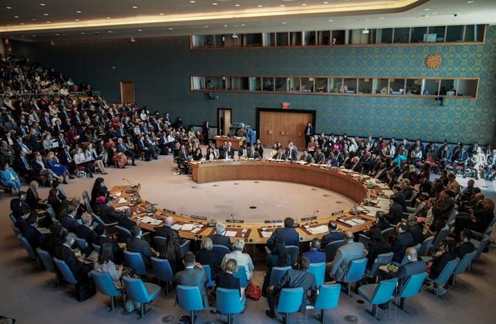 تركيا تشكو الإمارات في مجلس الأمن الدولي