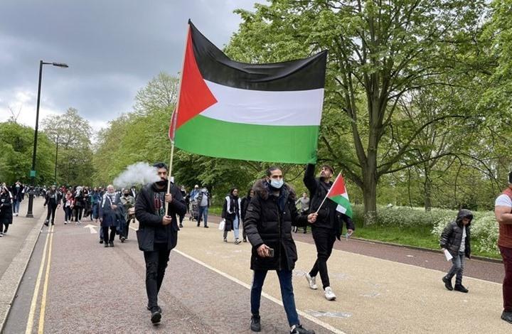 تظاهرات وفعاليات عربية وعالمية واسعة بذكرى النكبة (شاهد)