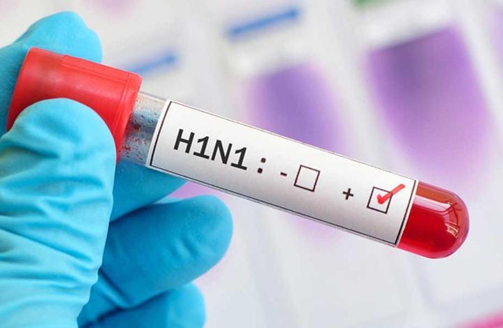 علماء صينيون: سلالة جديدة لإنفلونزا الخنازير قد تنتقل للبشر