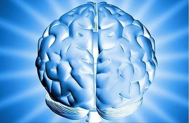 4 فيتامينات مطلوبة لحماية الدماغ البشري.. تعرف عليها