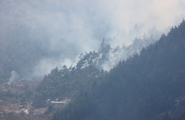 صواريخ نظام الأسد تتسبب بحريق في غابات ريف اللاذقية (صور)