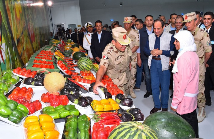 هذا ما سيلحق بفلاحي مصر بعد اقتحام الجيش لميدان الزراعة