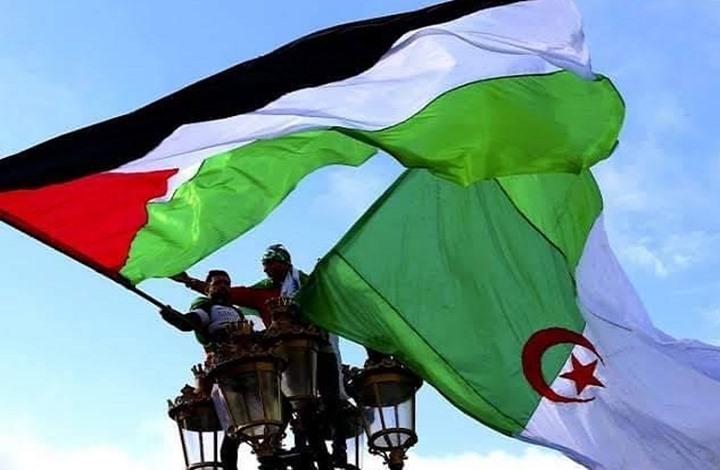 مع فلسطين ظالمة أو مظلومة.. الجزائر ومقاومة التطبيع (1من2)