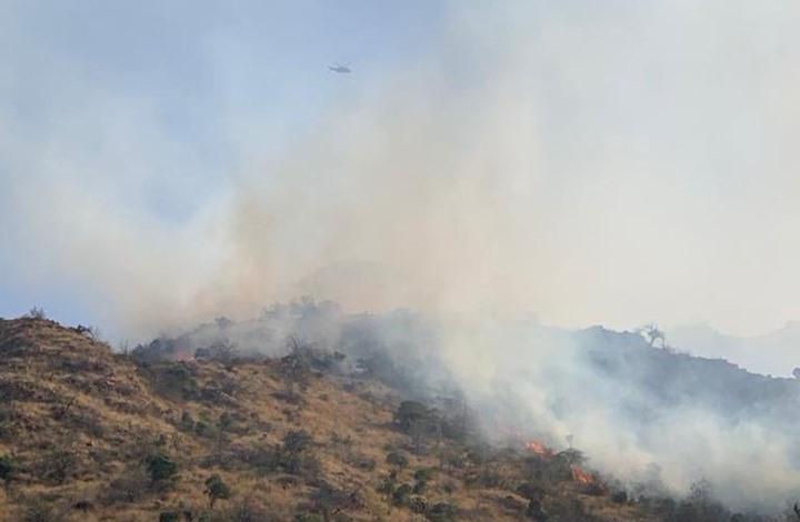 حرائق ضخمة متواصلة في جبال الطائف (شاهد)