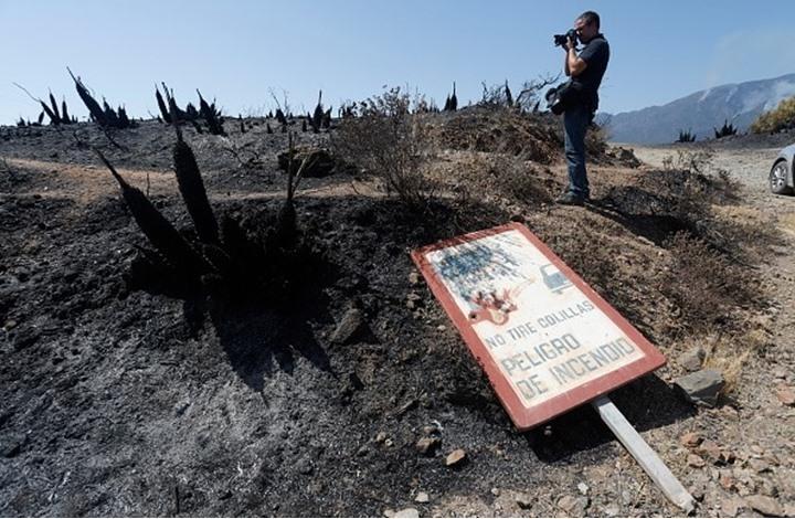 """استمرار حرائق الغابات بإسبانيا لليوم الرابع.. """"مشاهد مروعة"""""""