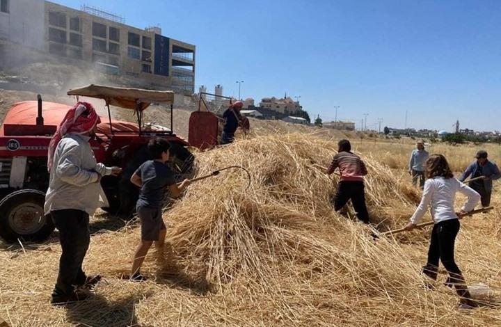 """""""خبز بلادنا"""".. كيف يسعى أردنيون """"للتحرر الغذائي"""" (شاهد)"""