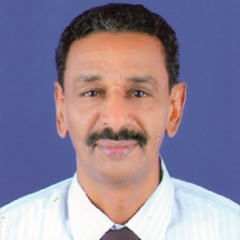 موكب 30 يونيو اختبار للديمقراطية في السودان