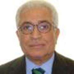 غريفيث وتعثره في إيجاد مخرج للأزمة اليمنية