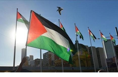 هيئة عالمية تدعو لدعم المنظمات الفلسطينية ضد إرهاب الاحتلال