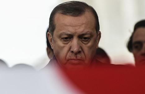 مفاجأة.. صور لأردوغان بصناديق الاقتراع بانتخابات فرنسا (صور)