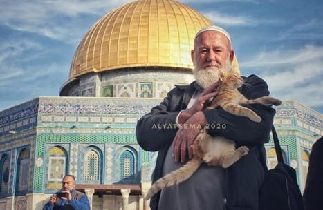 """رحيل """"أبي الهريرات"""".. أبرز المرابطين في المسجد الأقصى (شاهد)"""