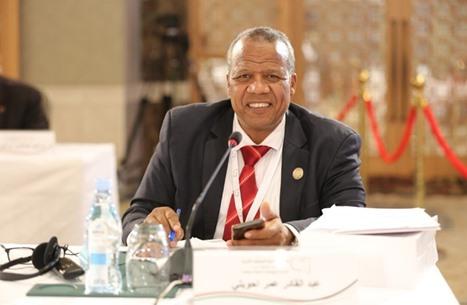 مسؤول ليبي: هذا ما دار خلال اجتماع اللجنة الدستورية بمصر