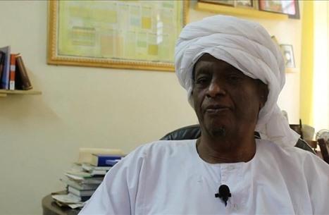 أكاديمي سوداني: هذه علاقتي بفلسطين وقصة لاءات الخرطوم