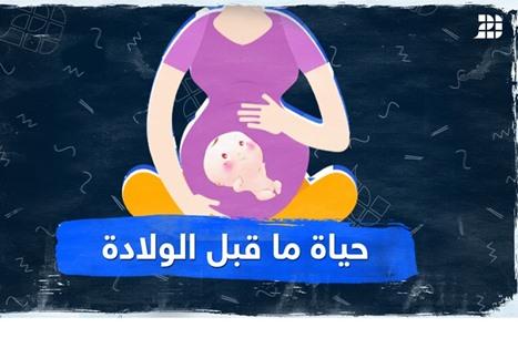 حياة ما قبل الولادة