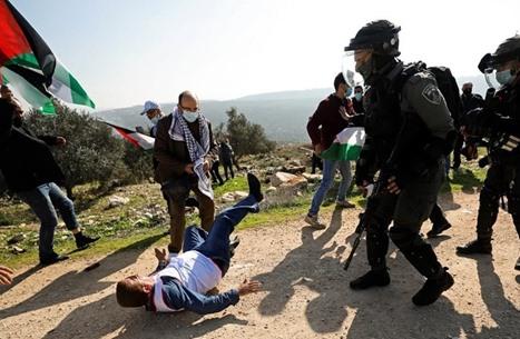 إصابات باعتداء الاحتلال على وقفة منددة بالاستيطان بالضفة