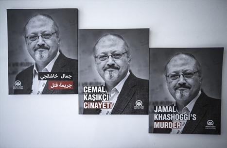 موقع: قتلة خاشقجي حصلوا على مواد مخدرة مميتة من مصر