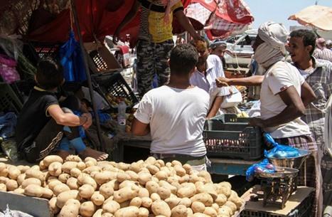 """""""فاو"""": 30 مليون جائع بالشرق الأوسط مع أزمات سوريا واليمن"""