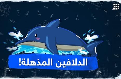 الدلافين المذهلة!