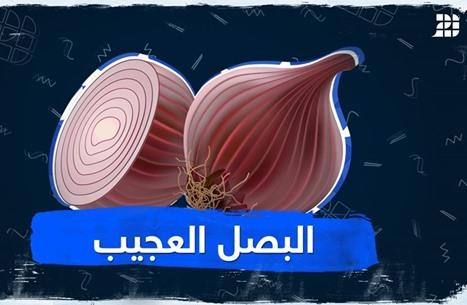 البصل العجيب