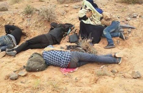 نازحة سورية تضع وليدتها بين المغرب والجزائر .. والمأساة تستمر