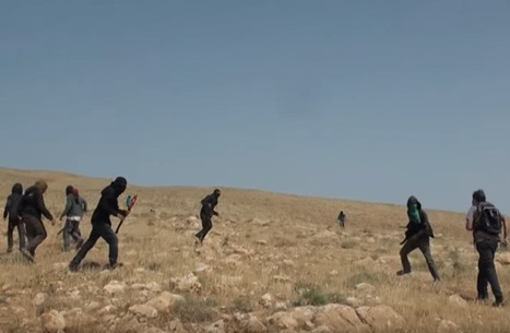 هآرتس: خارقو القانون اليهود في إسرائيل لا يعتقلون (شاهد)
