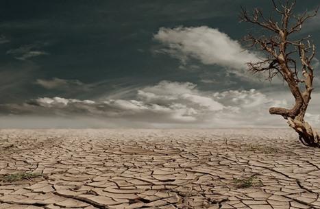 تقرير دولي يرسم صورة قاتمة للتغير المناخي والأمم المتحدة تحذر