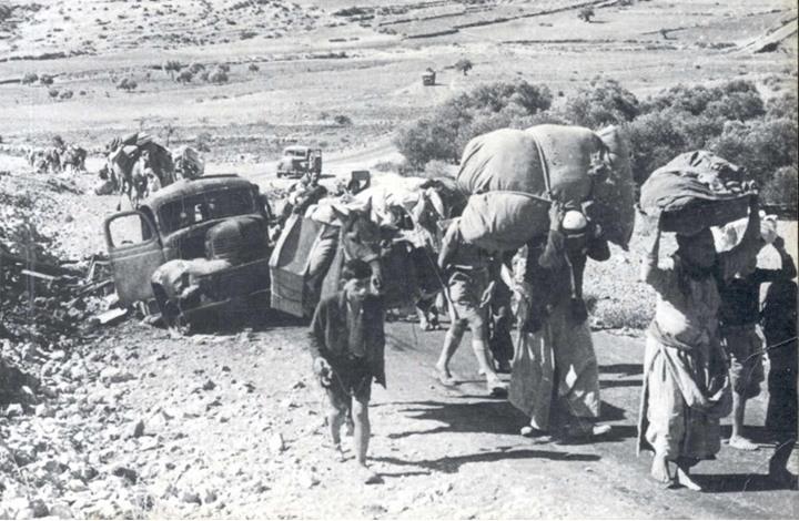 أكاديمي أمريكي: من حق اللاجئين الفلسطينيين العودة إلى وطنهم