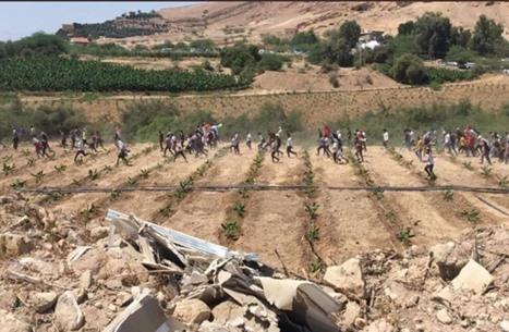 شبان يجتازون السياج الفاصل بين لبنان والأراضي المحتلة (شاهد)