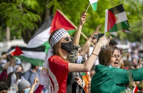 استمرار فعاليات التضامن العربي الشعبي مع الفلسطينيين (شاهد)