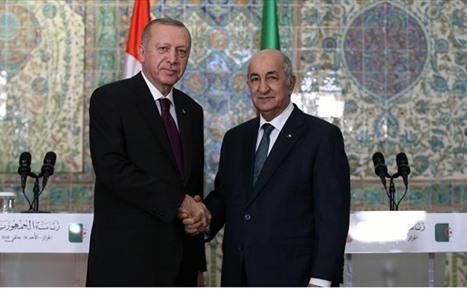 الرئيس التركي يبحث مع نظيره الجزائري قضايا المنطقة