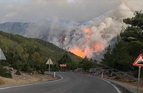 تركيا: السيطرة على 74 حريقا من أصل 85 ودول تعرض المساعدة