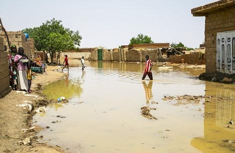 عقب تحذير الحكومة.. هل يتكرر سيناريو فيضان السودان بمصر؟