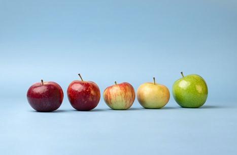 أصله كازاخستان وفيه سم غير قاتل.. ماذا تعرف عن التفاح؟