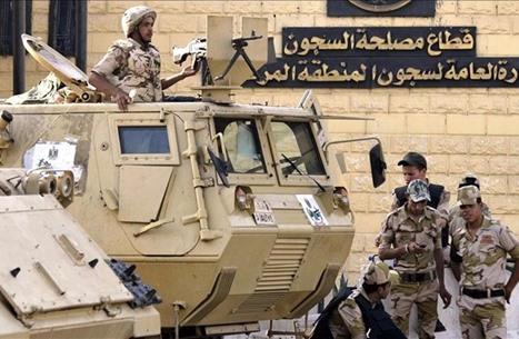 """مسمّى """"نزيل"""" بدل """"سجين"""" يثير مطالب بوزارة للسعادة بمصر"""