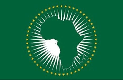 7 دول تتحرك ضد منح الاحتلال صفة مراقب بالاتحاد الأفريقي