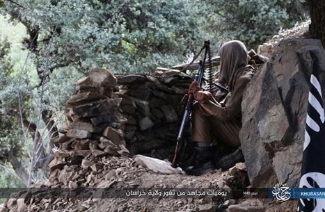 WSJ: طالبان تحاول التخلص من خطر تنظيم الدولة