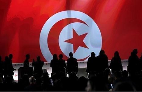 هل الفوضى مدخل للتحول الديمقراطي؟ تجربة تونس نموذجا (1من2)